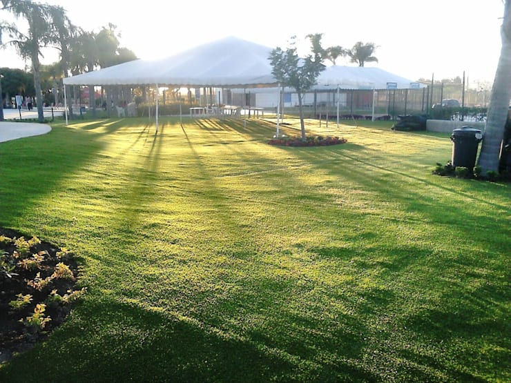 Pastos sintéticos: Jardines de estilo  por Grupo Boes