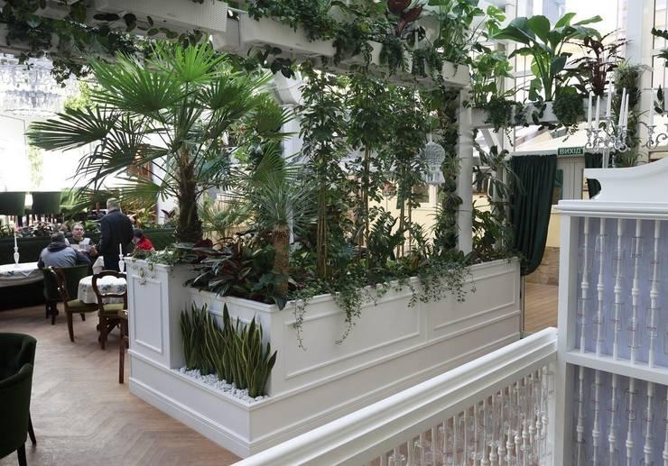 Zielona ściana – prosty montaż, fantastyczny efekt!: styl , w kategorii Ogród zaprojektowany przez Pixel Garden,Nowoczesny