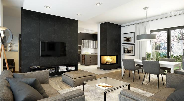 Projekt domu Ignotus - wnętrza.: styl , w kategorii Salon zaprojektowany przez Oryginalneprojekty s.c.