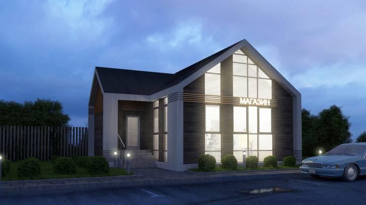 Реконструкция жилого дома под магазин: Дома в . Автор – Архитектурная мастерская DOME