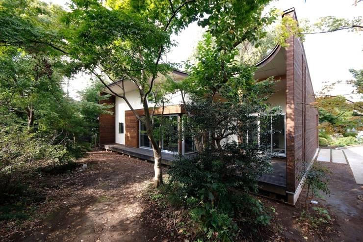 木立の樹木を屋根の一部として活用: 前田敦計画工房が手掛けた家です。