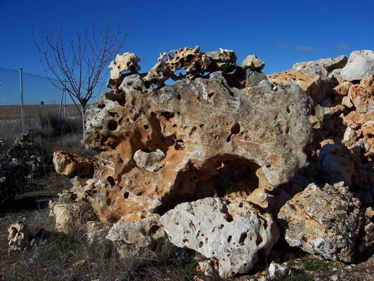 Piedra Rocalla: Jardines de estilo  de Rocalla