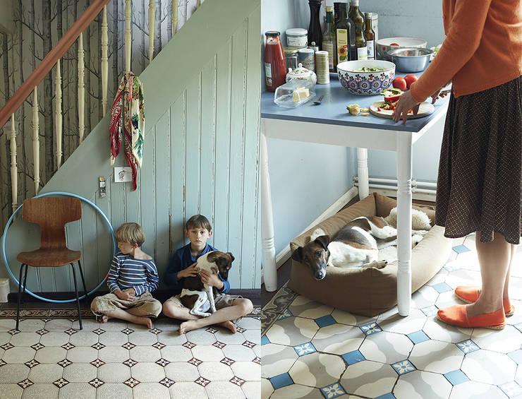 Cloud 7 Finest Interiors for Dogs & Dog Lovers: modern tarz Oturma Odası