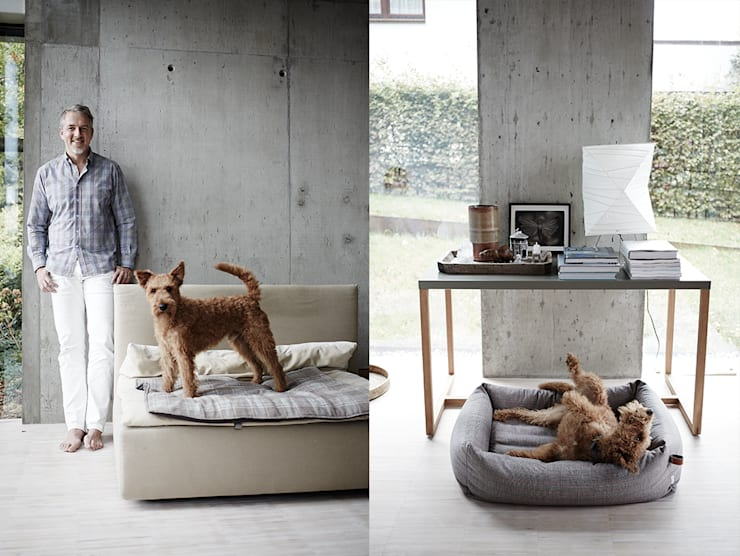 Living room by Cloud 7 Finest Interiors for Dogs & Dog Lovers