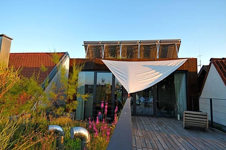 Die Nordterrasse:  Terrasse von Architekturbüro 011