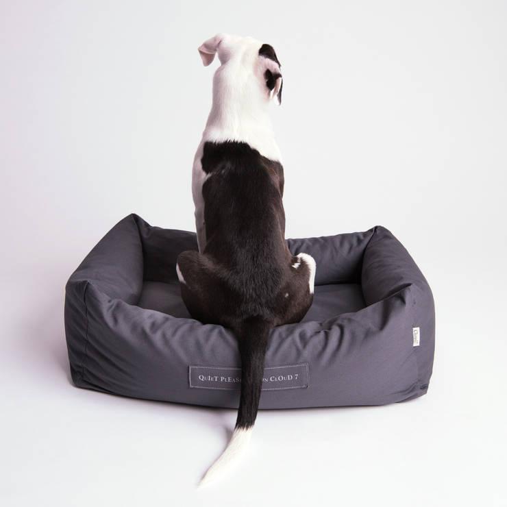 Sala de estar  por Cloud 7 Finest Interiors for Dogs & Dog Lovers