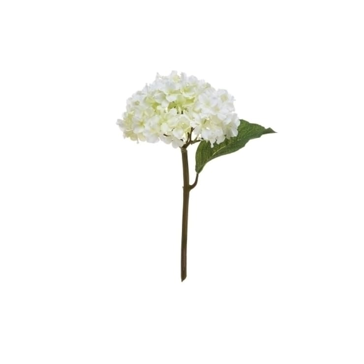 Sia home fashion white hydrangea stem by silk petal homify sia home fashionwhite hydrangea stem mightylinksfo