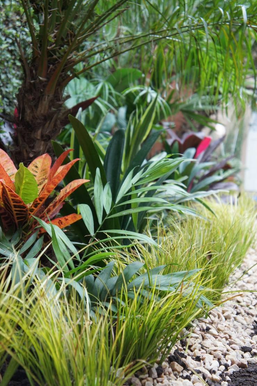 Jardín de Sombra: Jardines de estilo  por Estudio Nicolas Pierry: Diseño en Arquitectura de Paisajes & Jardines
