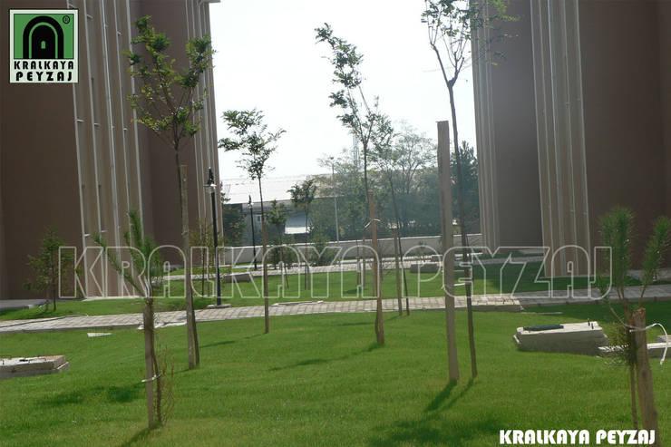 Kralkaya Peyzaj Havuz Fıskiye Sist. ve Pompa Mim. Müh. İnş. Ltd. Şti  – Merzifon / Amasya - 1.Etap TOKİ Uygulaması:  tarz Bahçe, Akdeniz