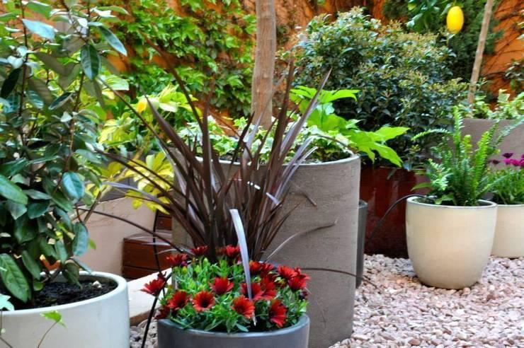 Jardín en Gràcia: Jardín de estilo  de ésverd - jardineria & paisatgisme