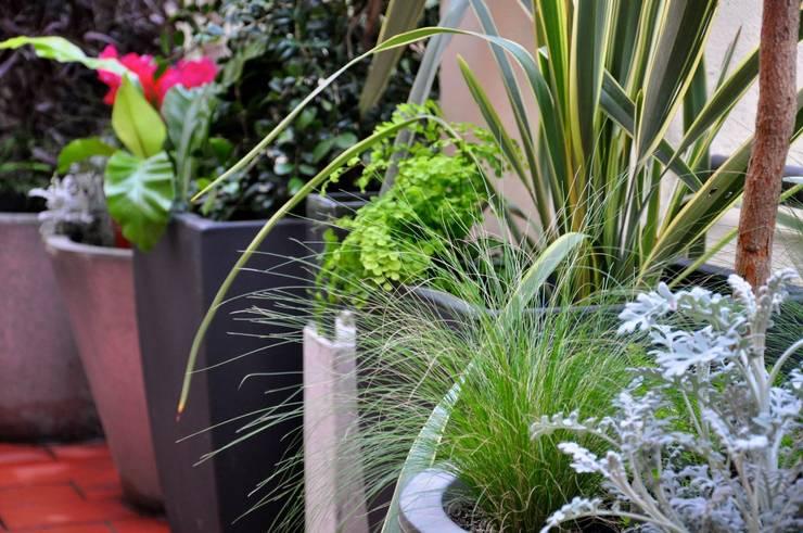 Balcones y terrazas de estilo  por ésverd - jardineria & paisatgisme