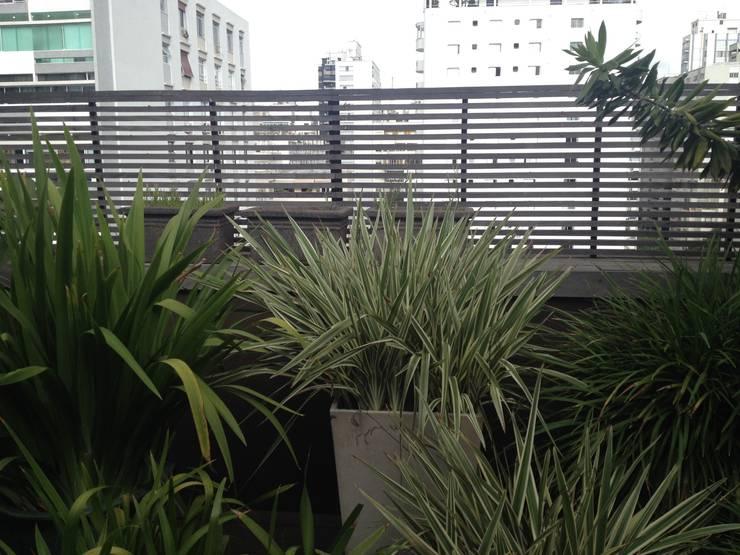 Projeto Paisagístico Terraço em São Paulo – SP – 2014: Terraços  por Rizck Paisagismo