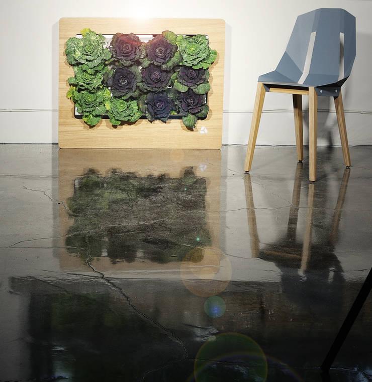 Florama beżowa z czujnikiem: styl , w kategorii Zieleń wewnątrz zaprojektowany przez FLORABO2