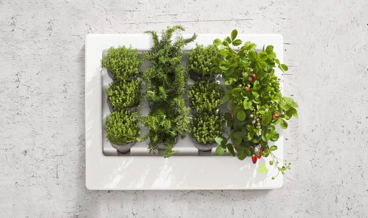 Florama duża biała z czujnikiem: styl , w kategorii Zieleń wewnątrz zaprojektowany przez FLORABO2