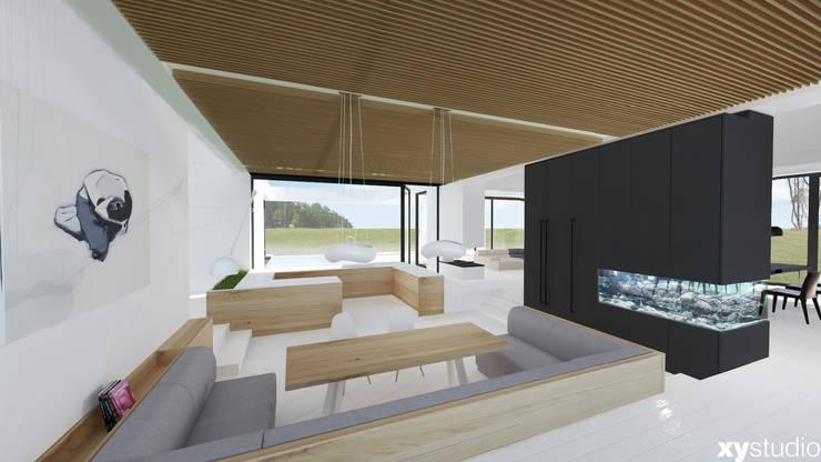Dom Jednorodzinny DiW2012: styl , w kategorii Kuchnia zaprojektowany przez xystudio