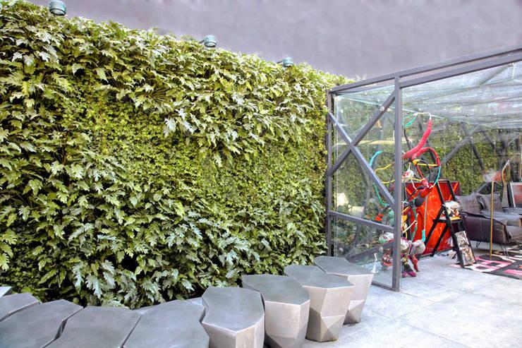 Projetos Diversos: Lojas e imóveis comerciais  por Quadro Vivo Urban Garden Roof & Vertical,Moderno