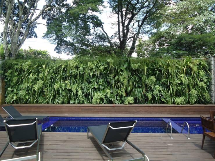 Projetos Diversos: Piscinas  por Quadro Vivo Urban Garden Roof & Vertical