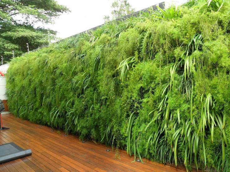 Projetos Diversos: Jardins tropicais por Quadro Vivo Urban Garden Roof & Vertical