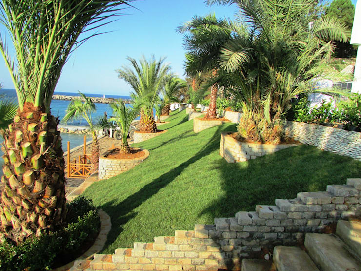 Peyzaj Mimarlık – Otel Bahçesi  Peyzaj Uygulaması:  tarz Bahçe