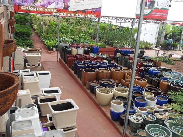 Setor de Vasos Vietnamitas: Espaços comerciais  por Blumengarten Plantas e Flores LTDA,