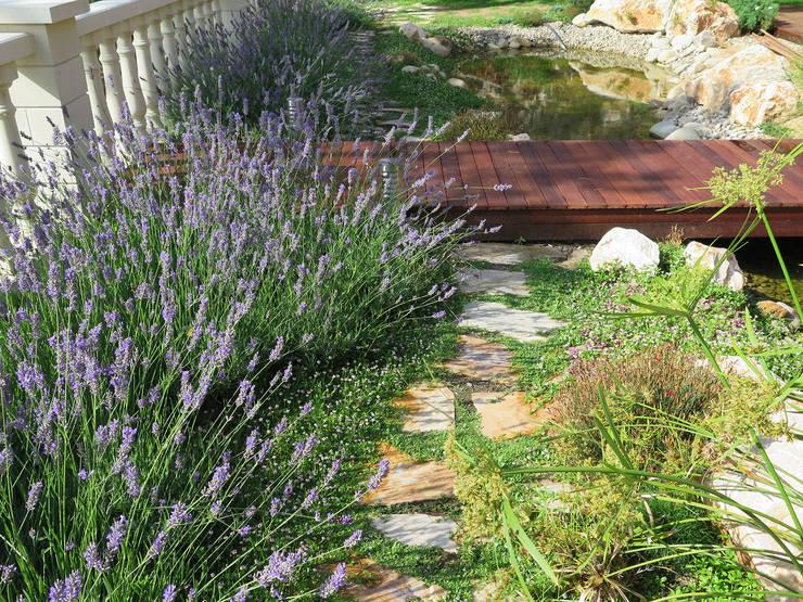 Camino de losas: Jardines de estilo mediterráneo de LANDSHAFT
