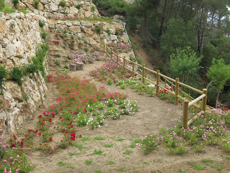 Rosaleda: Jardines de estilo mediterráneo de LANDSHAFT