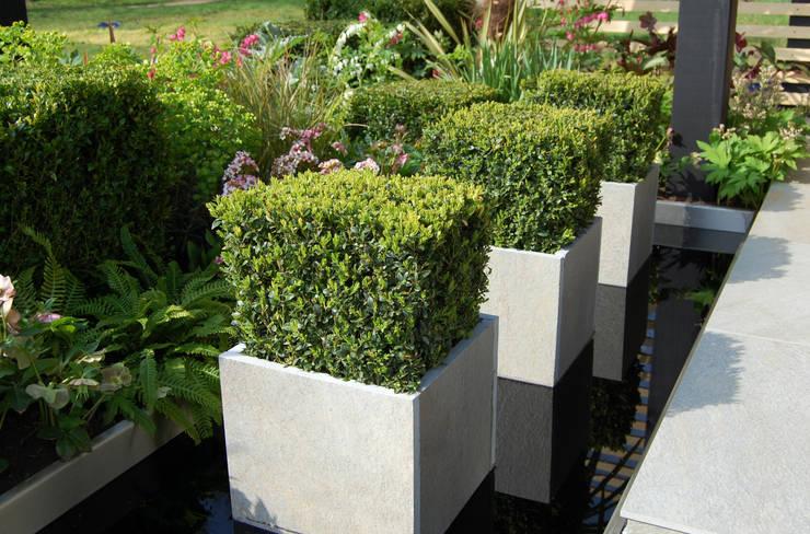 Office Box:  Garden by Robert Hughes Garden Design