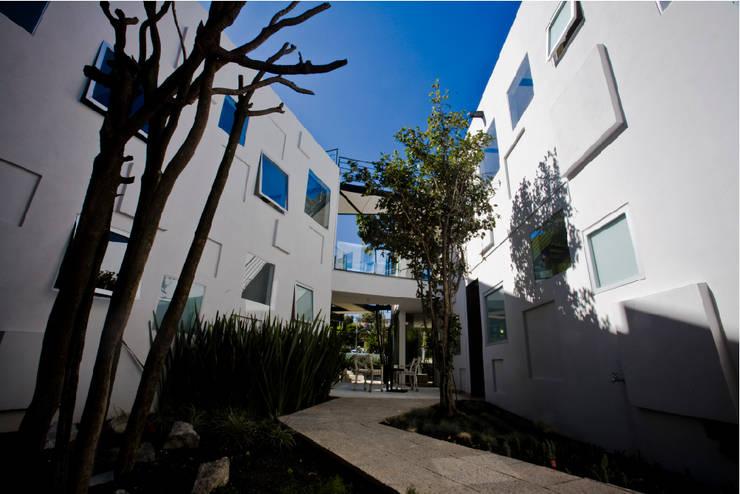 TREVOX: Jardines de estilo  por Craft Arquitectos
