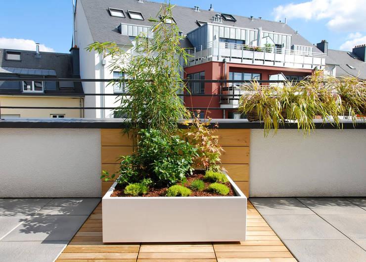 moderner Balkon, Veranda & Terrasse von ATELIER SO GREEN