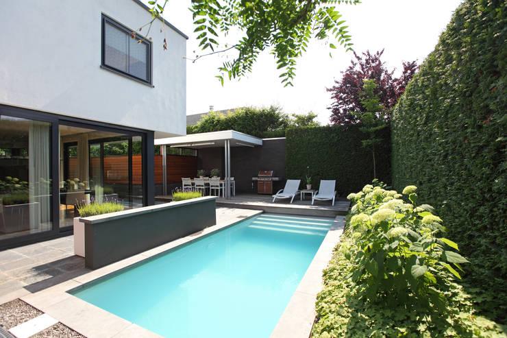 Het kleine zwembad ligt mooi in de ruimte:  Tuin door Stoop Tuinen, Modern