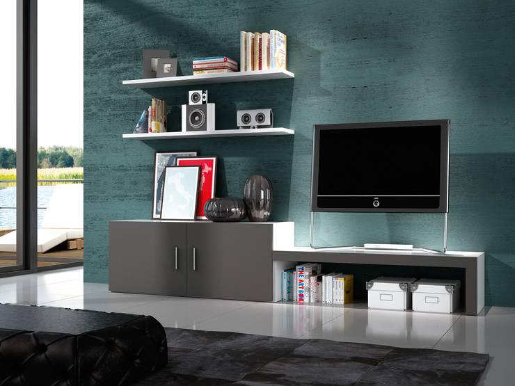 Composición Unica 101: Salones de estilo moderno de Muebles 1 Click