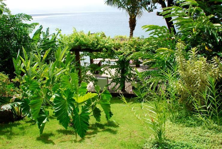 Jardines de estilo topical por Gil Fialho Paisagismo