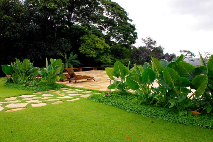 Residência SA – Ilhabela, SP:   por Gil Fialho Paisagismo