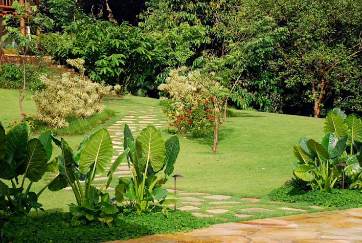 Residência SA - Ilhabela, SP:   por Gil Fialho Paisagismo