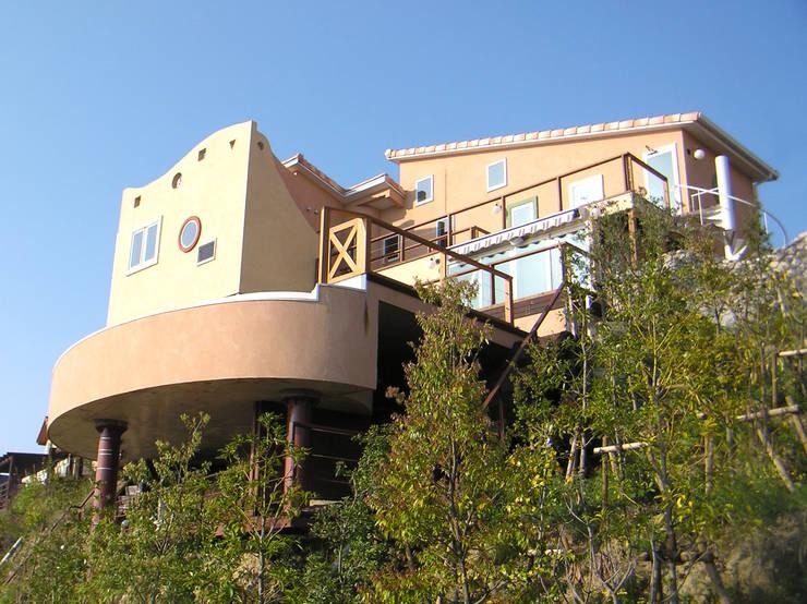 増殖するアール: スタジオドディチが手掛けた家です。