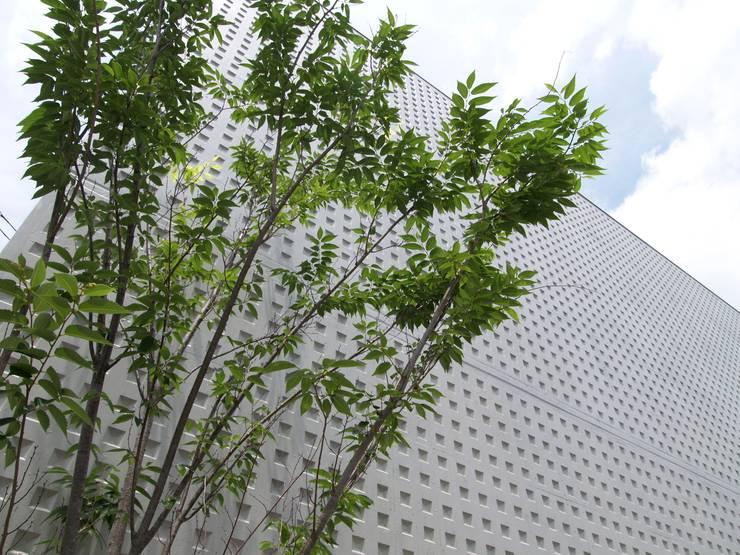 小さなチャペル: ai建築アトリエが手掛けたイベント会場です。