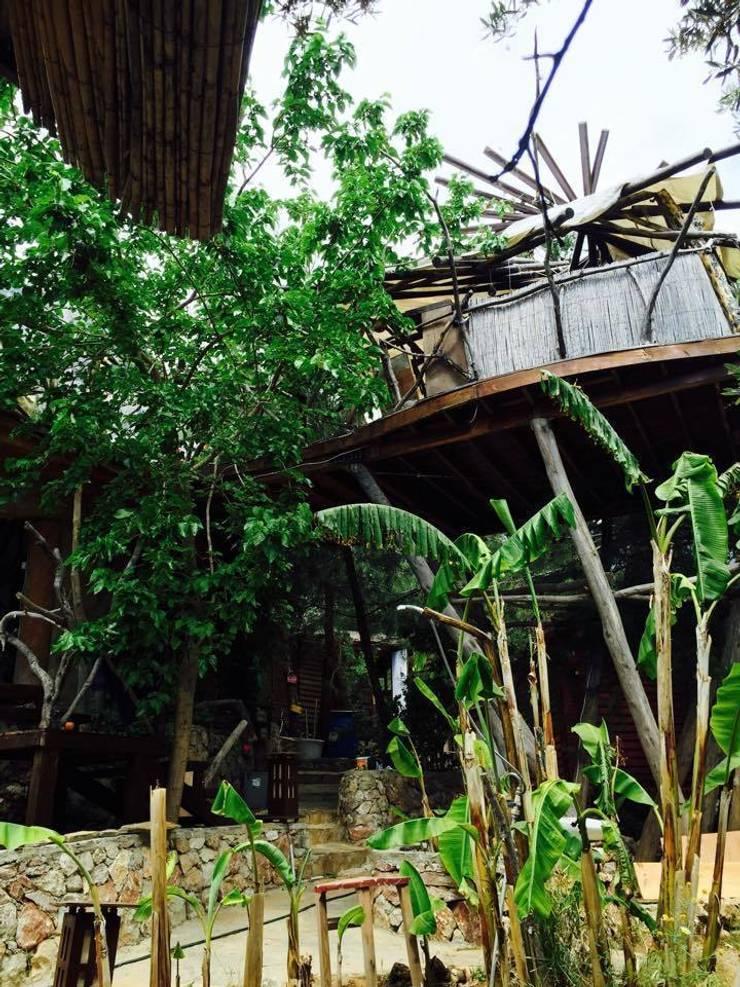 badem ağacı – Reflections Camp:  tarz Oteller, Akdeniz