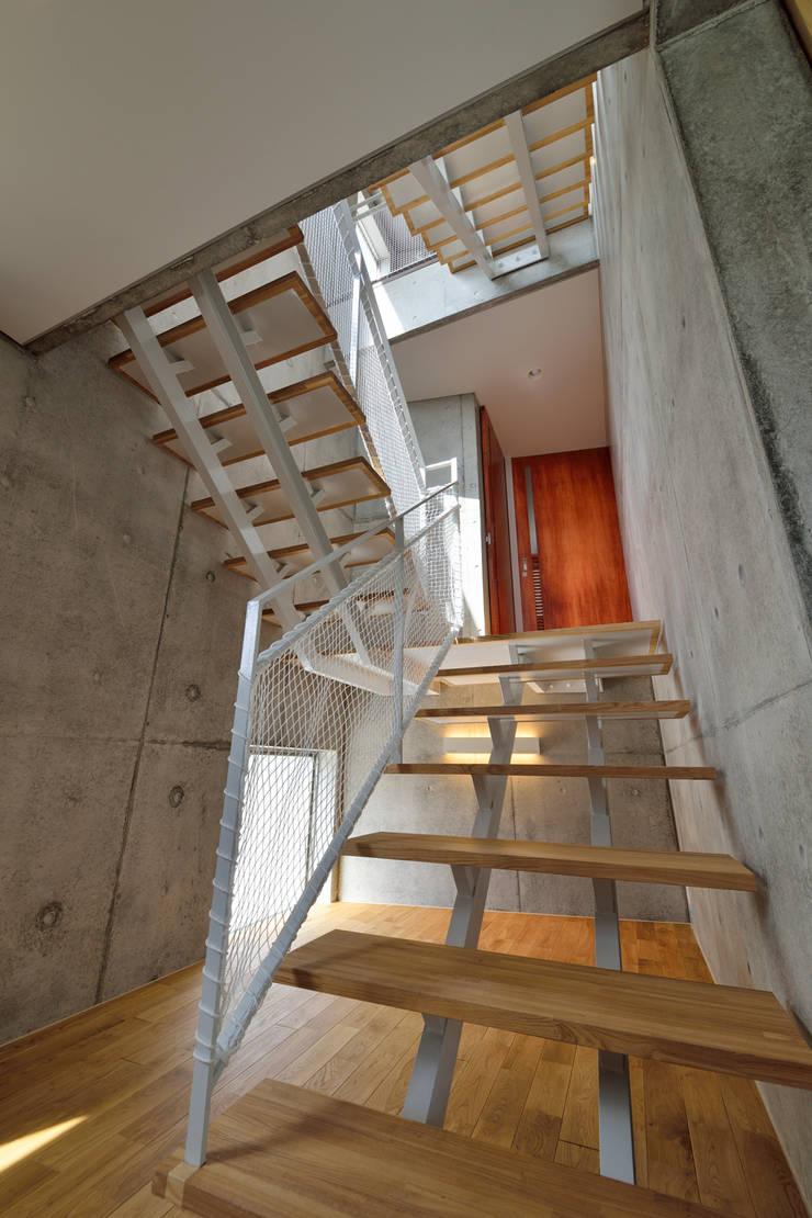 立体の家: プラソ建築設計事務所が手掛けた廊下 & 玄関です。