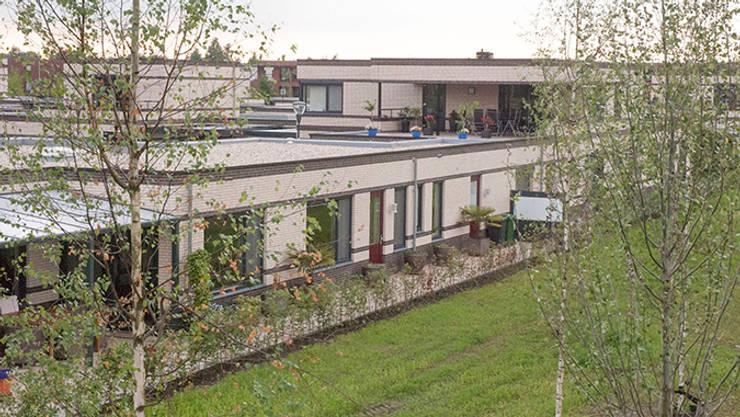 Achtergevels van de eindwoningen:  Huizen door Gunneweg & Burg, Modern