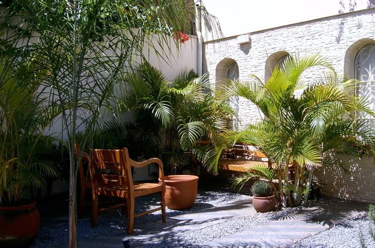 Giardino tropicale: Giardino in stile  di italiagiardini