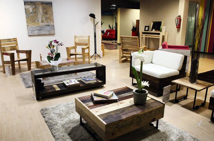 Burro, Alva y YonDe: Salas de estilo industrial por Mecate Studio