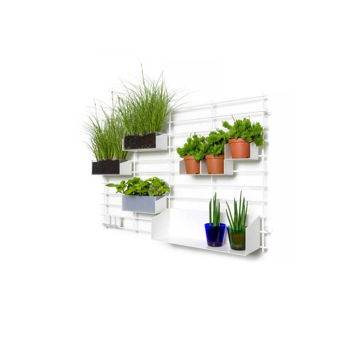 LOOPHOLE vertical garden:  Binnenbeplanting door Atelier Belge