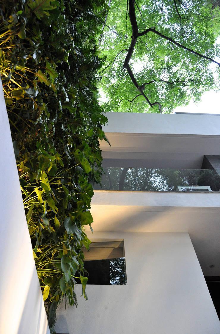 SC-152: Casas de estilo  por DF ARQUITECTOS