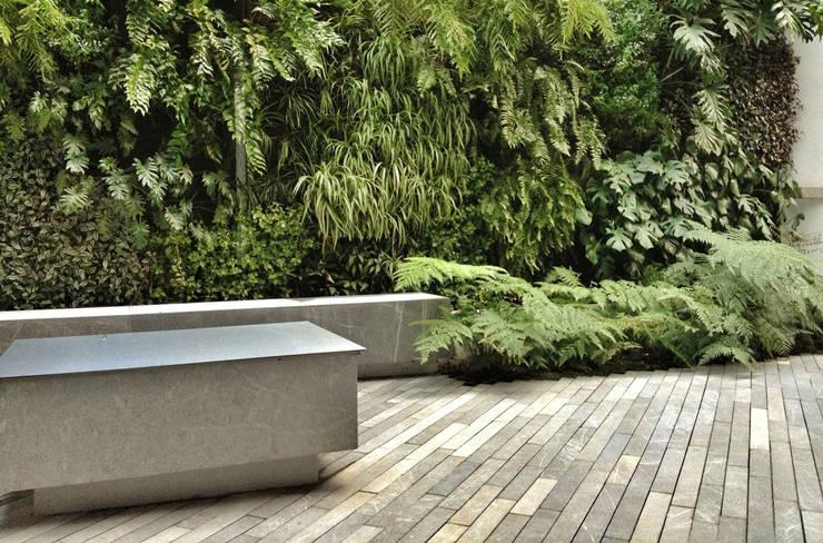 SC-152: Jardines de estilo  por DF ARQUITECTOS