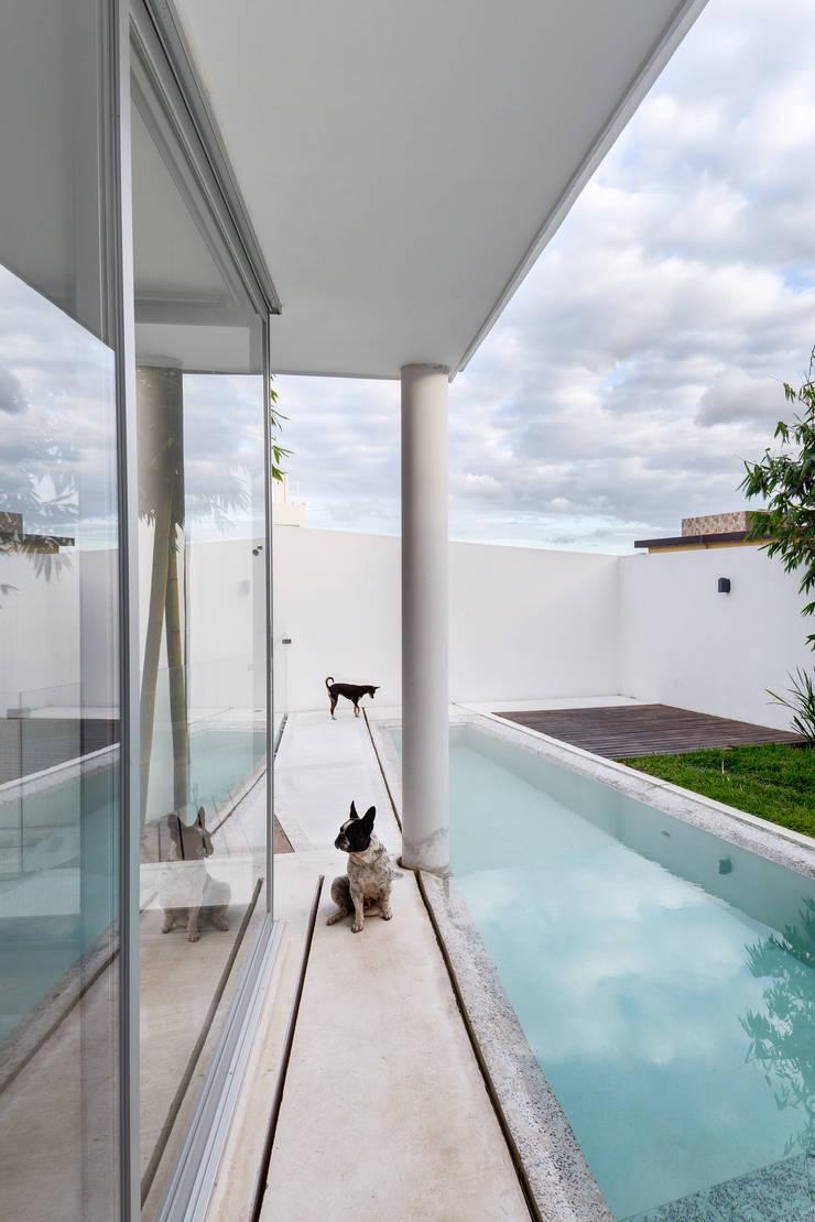 Ten House: Albercas de estilo  por Taller ADC Architecture Office
