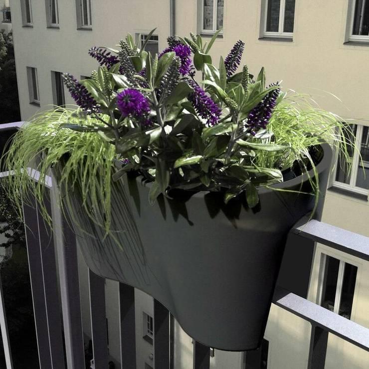 Balcones y terrazas de estilo moderno por Anchovisdesign