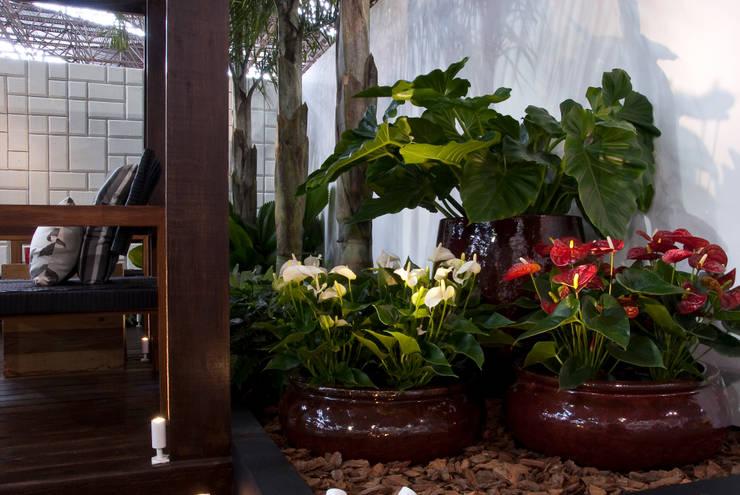 Сады в . Автор – Folha Paisagismo, Модерн