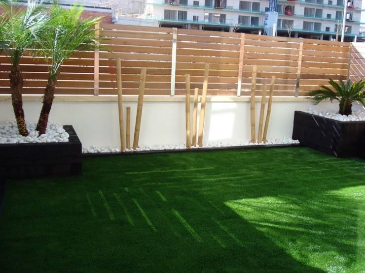 Combinación de bambú con césped artificial y bolo blanco: Terrazas de estilo  de dbambu