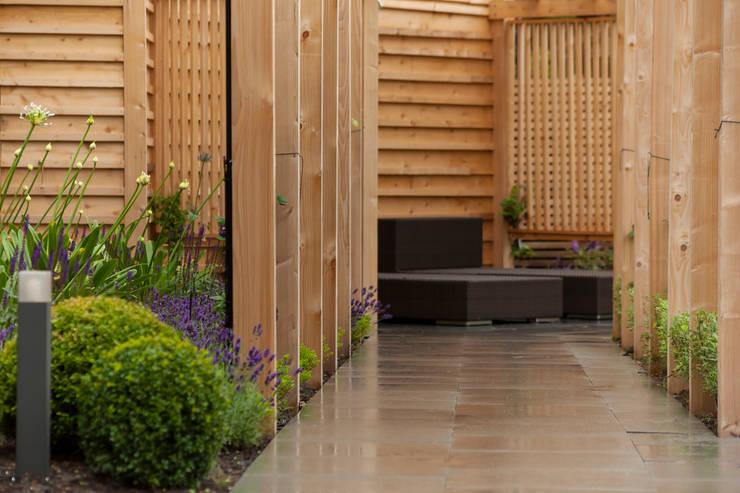A contemporary Surrey garden:  Garden by Forest Eyes Photography, Modern