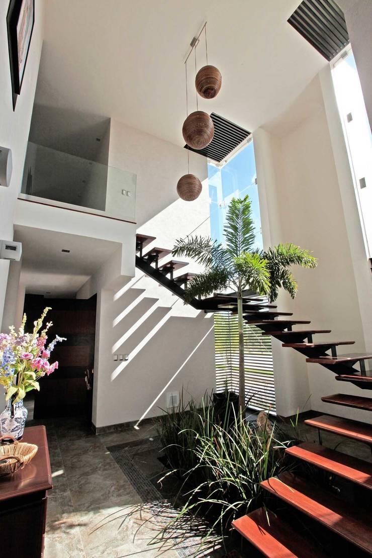 cubo escalera en armonia : Pasillos y recibidores de estilo  por AMEC ARQUITECTURA